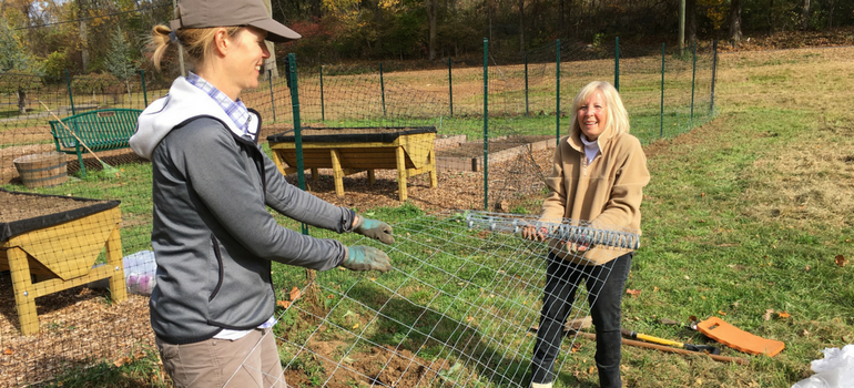 Culinary Wellness Garden Update: Giving Thanks For a Great Harvest